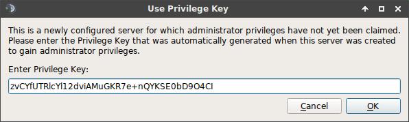 teamspeak privilege key