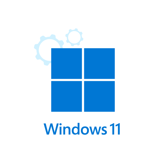 Windows 11 VPS